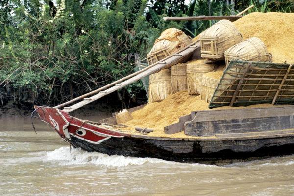 Gruppenreise Vietnam 2020 / 2021 - Tinta Tours Erlebnisreisen
