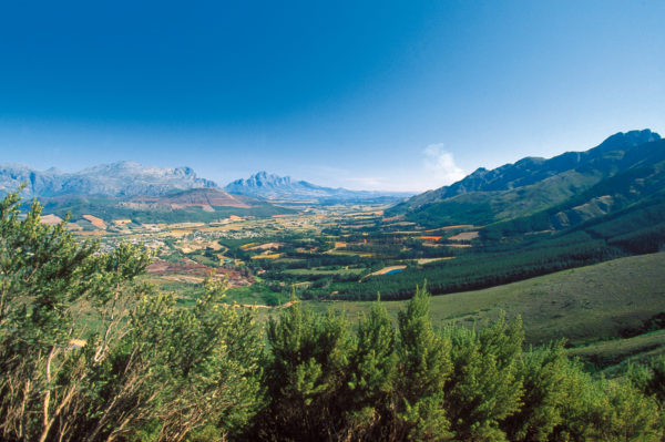 14-Tage-Erlebnisreise Südafrika 2020 / 2021 | Tinta Tours Erlebnisreisen