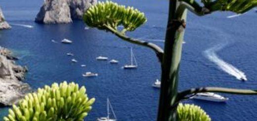 Golf von Neapel deutschsprachig gefuehrte Studienreisen 2021    Tinta Tours Erlebnisreisen