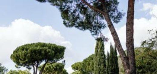 Rom deutschsprachig gefuehrte Studienreisen 2021  | Tinta Tours Erlebnisreisen