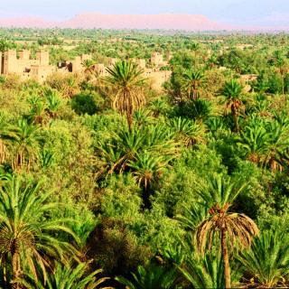 11-Tage-Radreise Marokko 2020/ 2021 | Erlebnisrundreisen.de