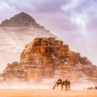11-Tage-Wanderreise Jordanien 2020/ 2021 | Erlebnisrundreisen.de