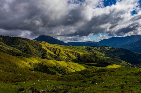 Wanderreise-Neuseeland-auf-Schritt-und-Tritt-4