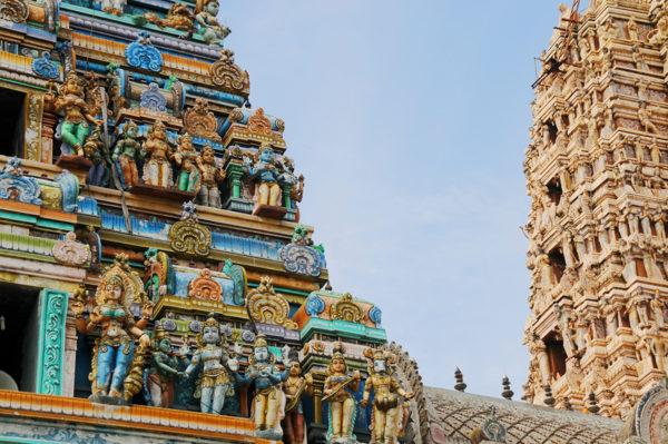 Gruppenreise Sri Lanka 2020 / 2021 - Tinta Tours Erlebnisreisen