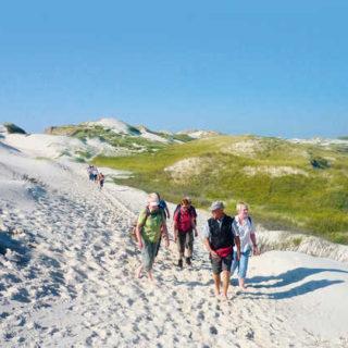 Wanderung in den Dünen - Martin Twietmeyer