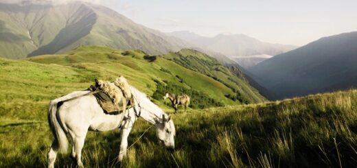 Armenien & Georgien gemütlich erwandern Gruppenreise 2020/2021 Kaukasus