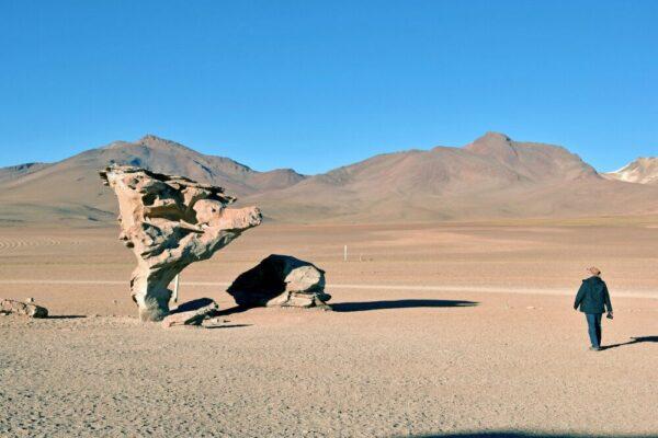 Felsformation: Arbol de Piedra