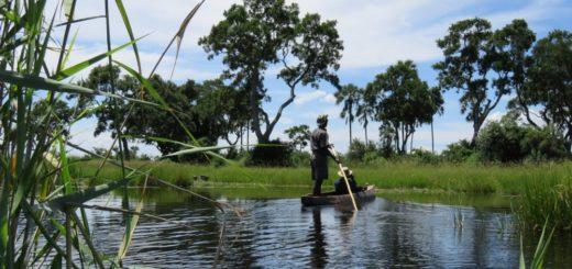Botswana-Okavango-Delta-Mokoro-Ausflug-abbiegen 2021   Erlebnisrundreisen.de