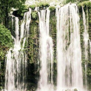 Costa Rica naturnah erwandern Gruppenreise 2020/2021