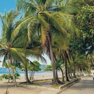 Costa Ricas ursprünglicher Norden Gruppenreise 2020/2021