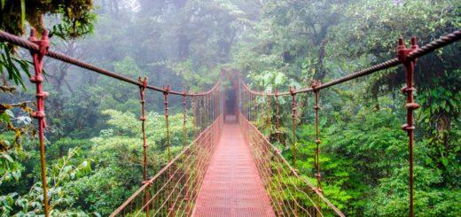 Costa Rica - Brücke im Regenwald 2021 | Erlebnisrundreisen.de