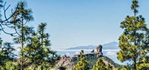 Gran Canarias Highlights erwandern Gruppenreise 2020/2021 Kanaren