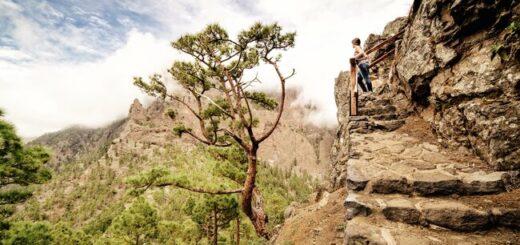 La Palma gemütlich erwandern Gruppenreise 2020/2021 Kanaren