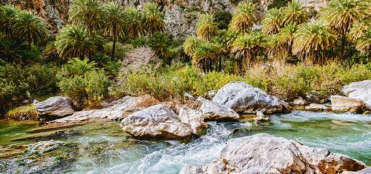 Kreta für Singles und Alleinreisende Gruppenreise 2020/2021 Griechische Inseln