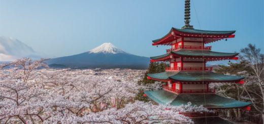 Fuji und Pagode während der Kirschblüte 2021 | Erlebnisrundreisen.de