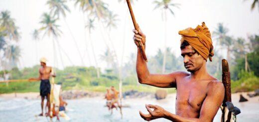 Sri Lanka komfortabel erwandern Gruppenreise 2020/2021 Nuwara Eliya