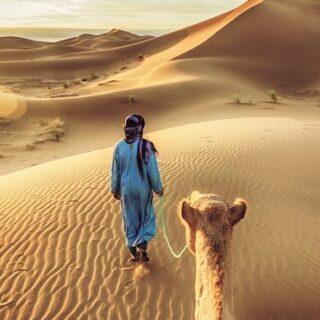 Marrakesch und der Zauber der Sahara Gruppenreise 2020/2021 Marrakesch