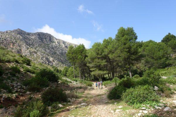 Landschaft in der Serra de Tramuntana