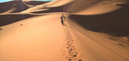 Hoch hinaus in der Erg Chebbi Wüste - Anja Riemann