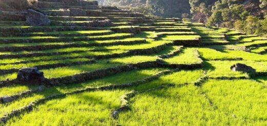 Nepal komfortabel erwandern Gruppenreise 2020/2021 Annapurna