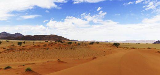 Farbenprächtige Namib Wüste 2021 | Erlebnisrundreisen.de