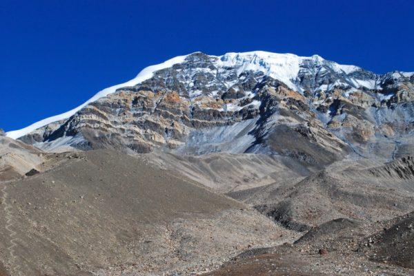 Nepal-Zustieg-Chulu-Far-East-Pinienwald