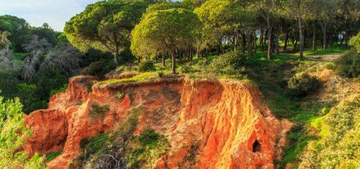 Silvester an der Algarve Gruppenreise 2020/2021 Portugal Festland