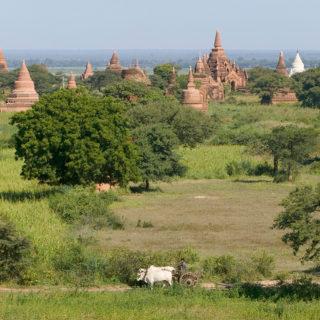 13-Tage-Privatreise Myanmar 2020/ 2021 | Erlebnisrundreisen.de