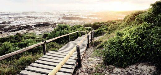 Südafrika - die Highlights der Kapregion und Gardenroute erwandern Gruppenreise 2020/2021 Port Elizabeth