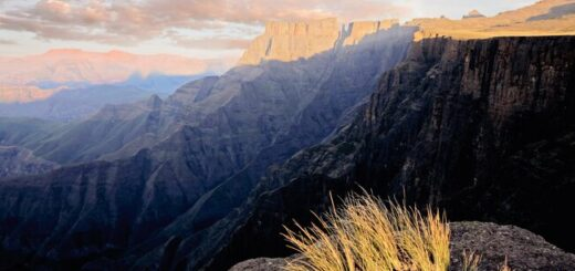 Südafrika komfortabel erwandern Gruppenreise 2020/2021 Johannesburg