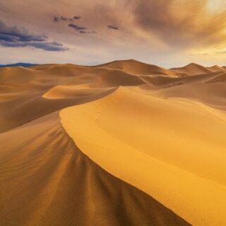 Kameltrekking durch die Sahara Gruppenreise 2020/2021