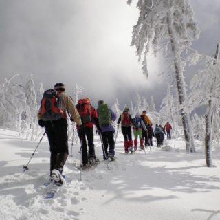 Schneeschuhgehen Bayerischer Wald 2 2020 | Erlebnisrundreisen.de
