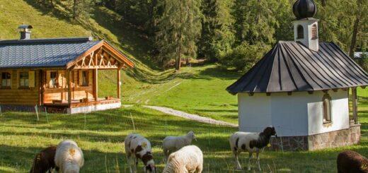 Almwandern - Mieminger Plateau Gruppenreise 2020/2021 Tirol