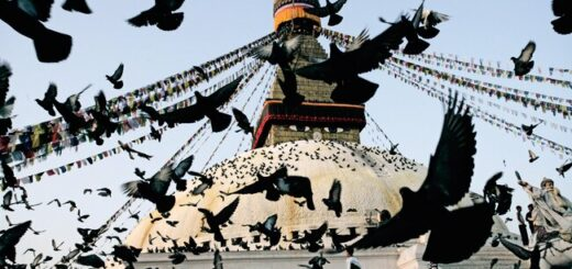 Nepal - die andere Seite der Annapurna Gruppenreise 2020/2021 Annapurna