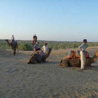 Kameltour in der Wüste Thar - Nicole Kuhn