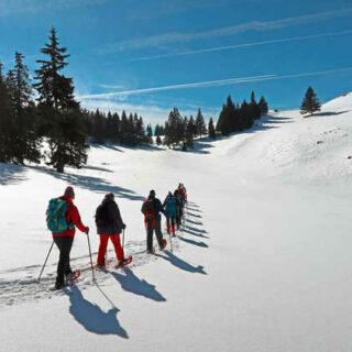Schneeschuhwanderung bei Magura - Rüdiger Schecke