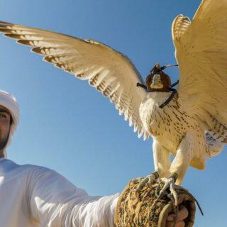 Rundreise Oman und Vereinigte Arabische Emirate 2021 / 2022 | Erlebnisrundreisen.de
