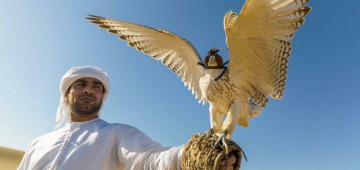 Rundreise Oman und Vereinigte Arabische Emirate 2021 / 2022   Erlebnisrundreisen.de