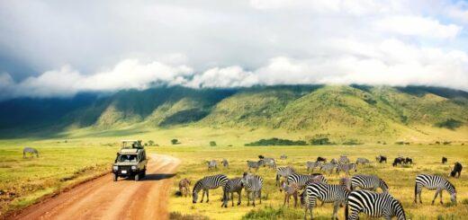 Safari Ngorongoro Krater National Park in Tansania 2021 | Erlebnisrundreisen.de