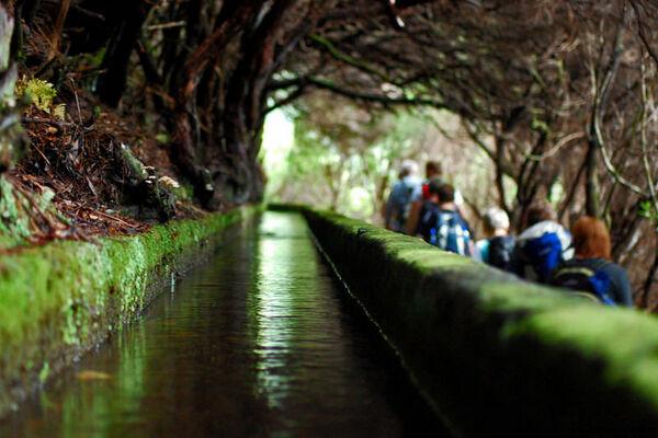 Madeira-Das-immergruene-Wanderparadies-6