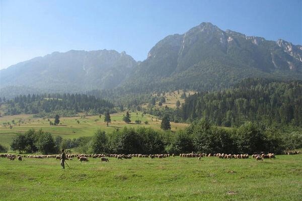 Rumaenien-Siebenbuergen-hautnah-7