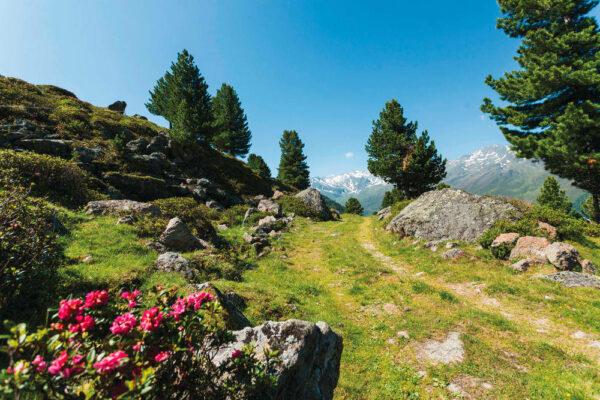 Landschaft Sellraintal - Mario Webhofer - © Innsbruck Tourismus / Mario Webhofer