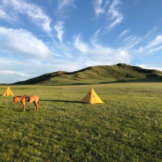 Zeltplatz in der Wüste Gobi 2021 | Erlebnisrundreisen.de