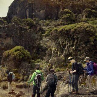 Kilimandscharo - 8-tägige Machame-Route