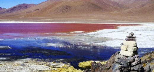 Laguna Colorada im Atliplano 2021   Erlebnisrundreisen.de