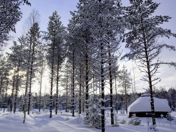 Finnland Erlebnisreisen junge Traveller 2021