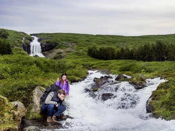 Island Erlebnisreisen 2021
